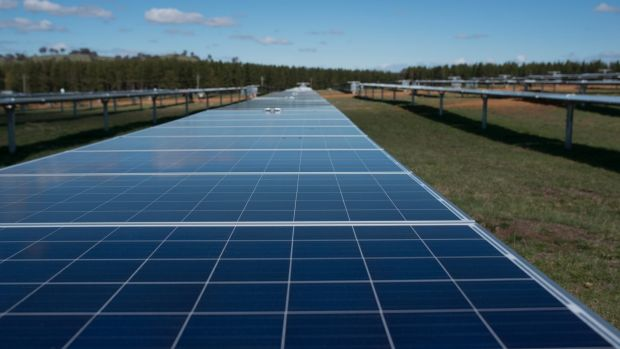 Across Australia, billions of dollars are being pumped into new solar farms.