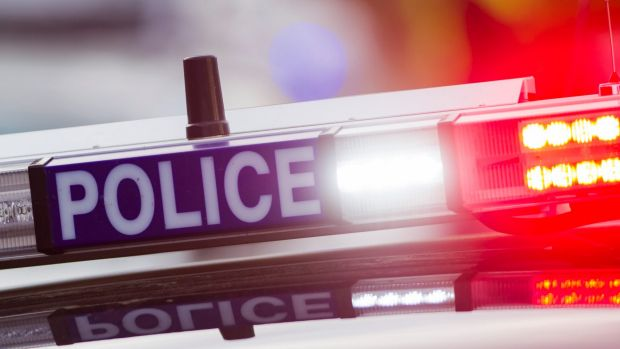 An ACT police officer came off second best against a dog when trying to make an arrest.