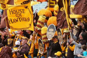 Hawthorn fans show their support  .