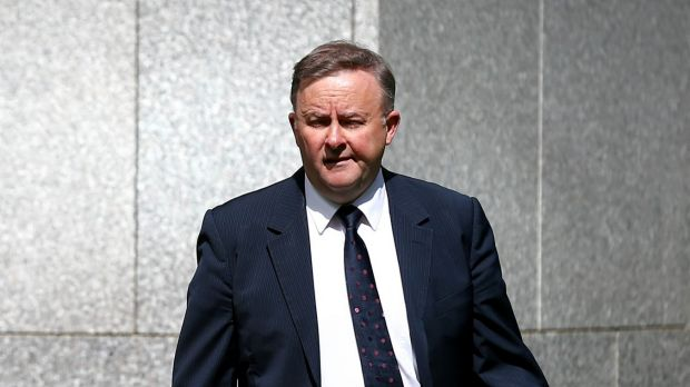 Deputy Labor leader Anthony Albanese is among those who have tried to raise awareness of the dangers of hui loans.