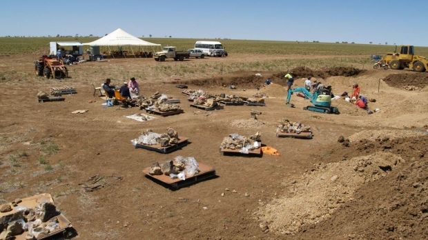 The central-western Queensland site in 2005, when the fossils were found.