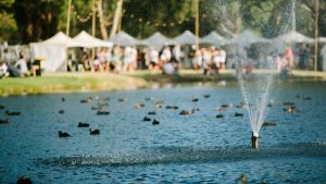Oakover will host the inaugural Grapes in the Ground festival in the Swan Valley.