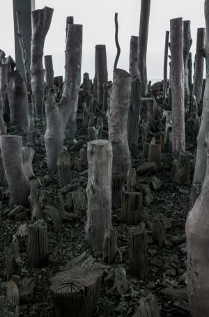 Han Sai Por's <i>Black Forest</i> addresses the annual Indonesian forest burnings.