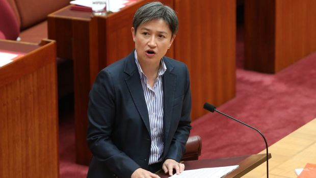 Senator Penny Wong said the government was in tatters.