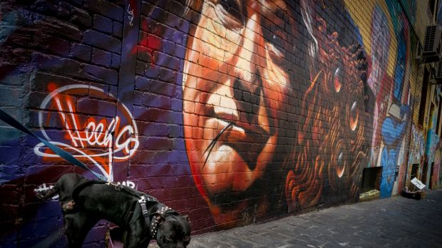 A dog urinates on a graffiti of Donald Trump at a laneway in Melbourne.
