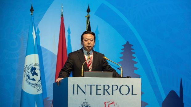 China involved in 3000 Interpol investigations, state media says