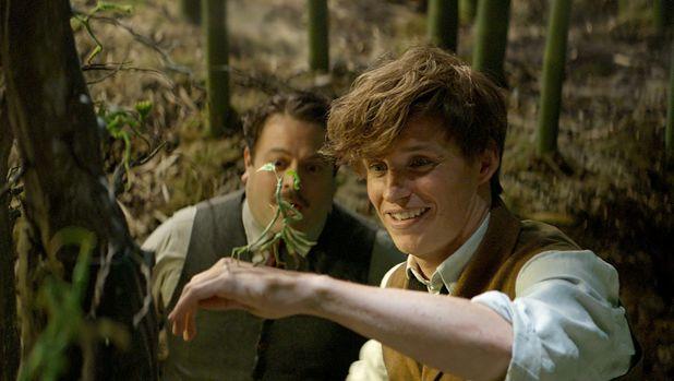 Magical hope: Eddie Redmayne and Dan Fogler (left) play Newt Scamander and his befuddled sidekick Jacob.