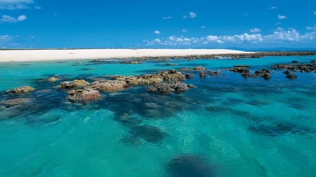 Michaelmas Cay on the Great Barrier Reef, where two French tourists died on Wednesday.