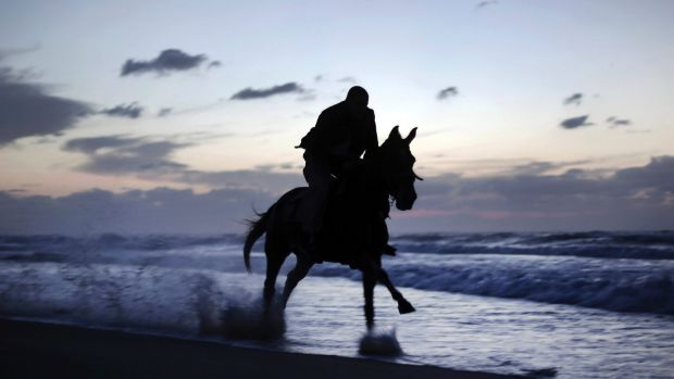 Perth horse riders praise decision to overturn beach riding ban riding horses on the beach will be allowed again at hillarys beach sciox Images