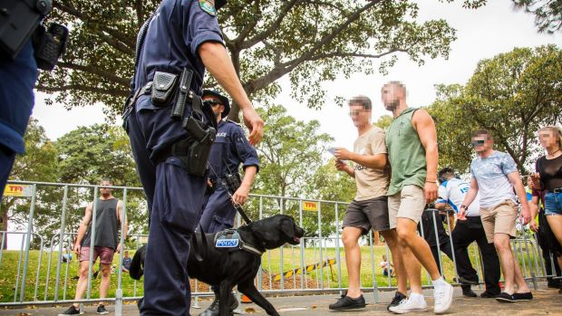 Police and Sniffer dogs were in high presence during Saturday's Harbourlife music festival in Sydney.