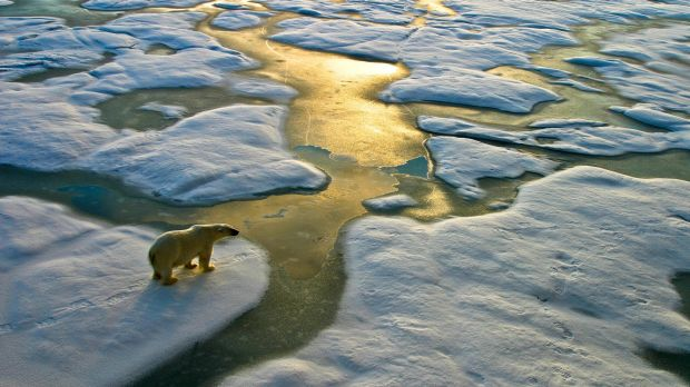 In 2016 overall, warm Arctic temperatures led to the second lowest level of Arctic sea ice ever recorded at the summer ...