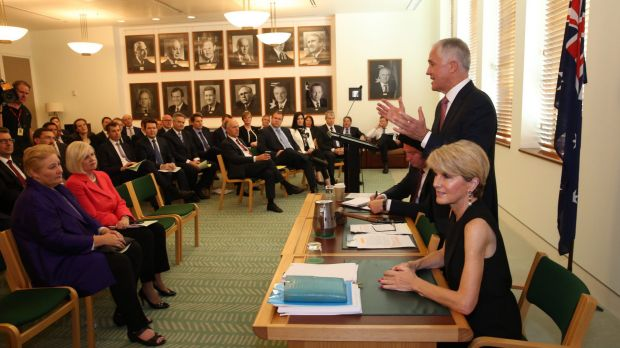 Malcolm Turnbull addressing the Coalition party room last year.