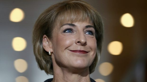 "Employment Minister Michaelia Cash said the program would give young people ""the skills they need to get their foot in ..."