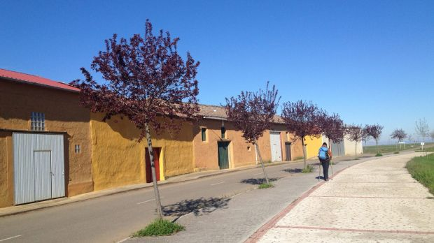 Spain's 800km Camino trail doesn't offer the greatest walking in the world, but it grows on you.