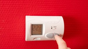 Your thermostat could be a placebo.