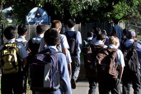 Voluntary fees at Sydney Boys High are among the highest of all public schools in NSW.