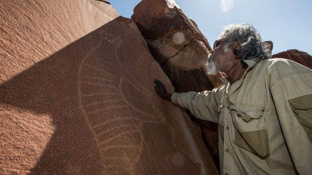 Senior cultural ranger at Murujuga National Park, Jakari Togo, stands next to a rock carving of a thylacine on the ...