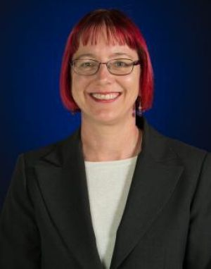 University of NSW workplace academic Sue Williamson.