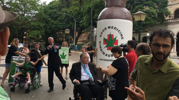 One Nation MP Steve Dickson, Independent MP Rob Pyne and councillor Jonathan Sri lead a rally supporting medicinal ...