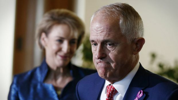 Senator Michaelia Cash and Prime Minister Malcolm Turnbull have been each sued over comments they made about Clive Palmer.