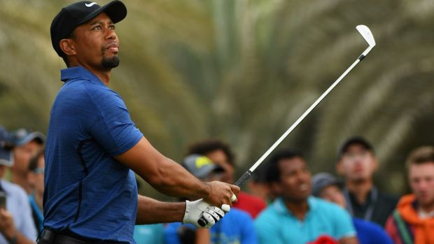 Playing through the pain: Tiger Woods.