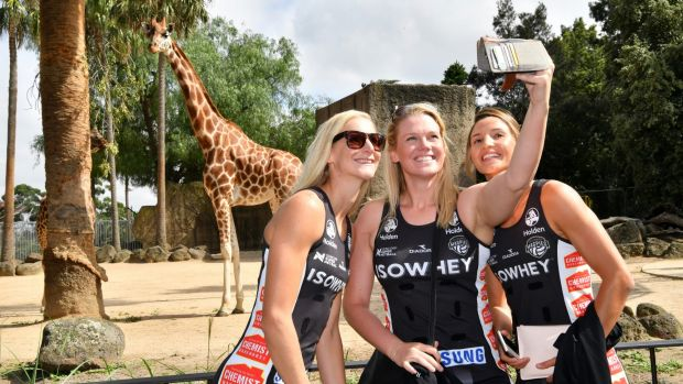Collingwood's April Brandley, Caitlin Thwaites and Kim Ravaillion at the zoo this week.