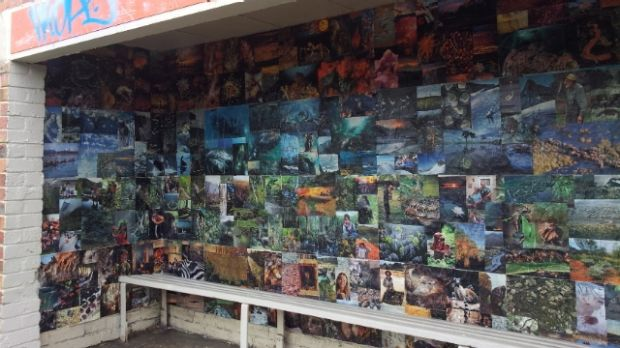 """A Northcote bus stop that has also been """"reclaimed""""."""