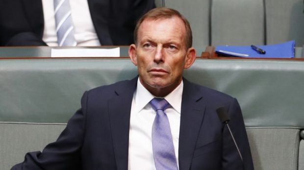 Former prime minister Tony Abbott in Parliament this week.