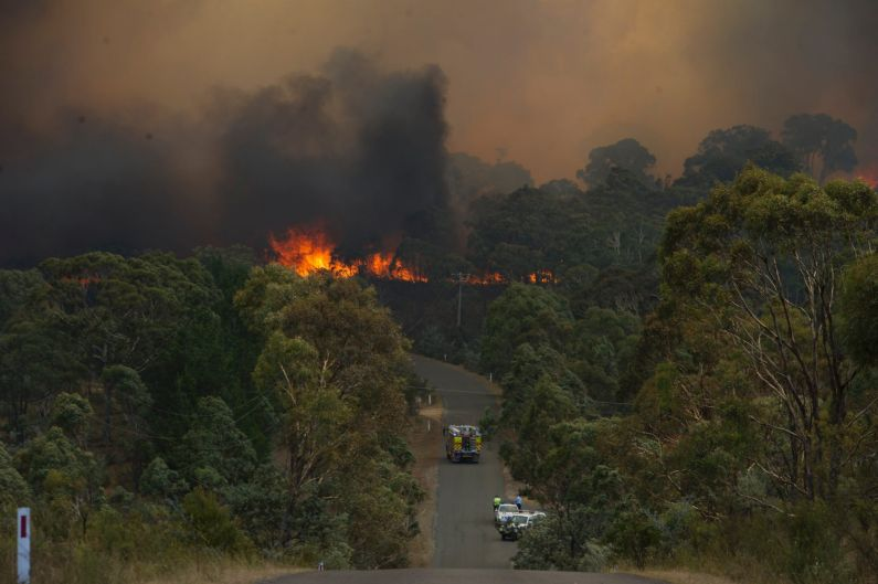 Fast moving bush fire at Widgiewa Rd on Captains Flat Road near Queanbeyan NSW Photo Jay Cronan