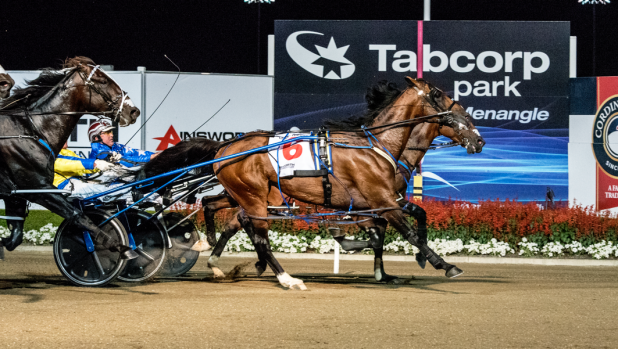 Grand Circuit champ: Lennytheshark (on the outside) wins the Miracle Mile.