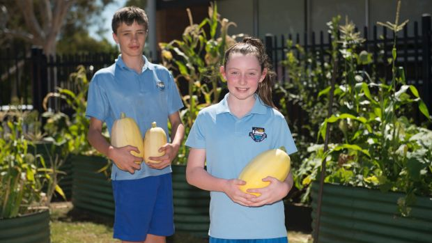 Lilly Harrison, 10, and Armand Rood, 11, in the veggie garden at Mawson Primary School.