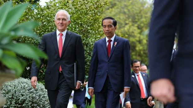 Prime Minister Malcolm Turnbull and Indonesian President Joko Widodo want the free trade deal concluded by the end of ...