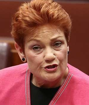Trying to outdo Pauline Hanson will do the Nationals no good.