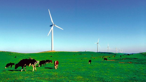 Nexif Energy's ambitions in Australia include conventional power as well as renewables.