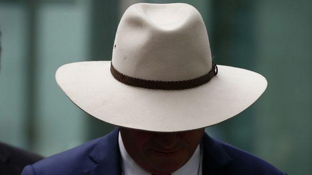 Deputy Prime Minister Barnaby Joyce on Thursday.