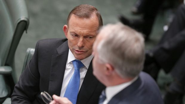Malcolm Turnbull avoids using Tony Abbott's name in interview amid internal tension