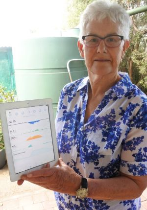 Lainie uses real time monitoring of the system to oversee energy use and creation.