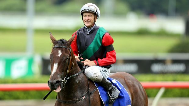 Autumn flyer: Blake Shinn returns on English after winning the  Challenge Stakes earlier this month.