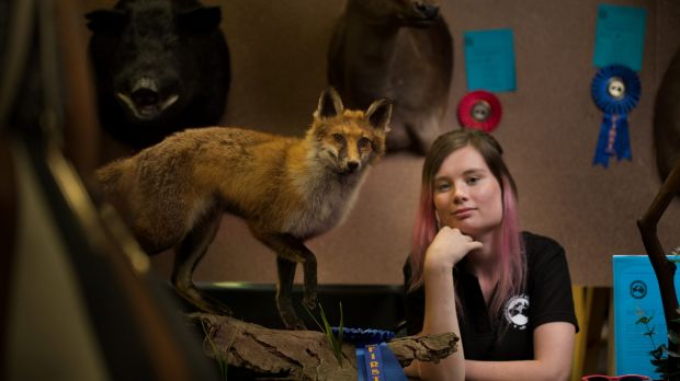 Brought to life: Brittany Porter won a first place in the small mammal novice section at the third annual Australian ...