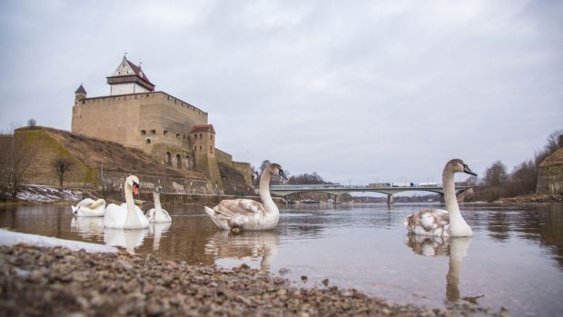 The Ivangorod castle by the Narva River.