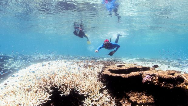 Association of Marine Park Tourism Operators chief executive Col McKenzie said the changes would result in a safer ...