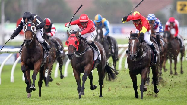 Race in three: Russian Revolution wins the tight battle down the straight.
