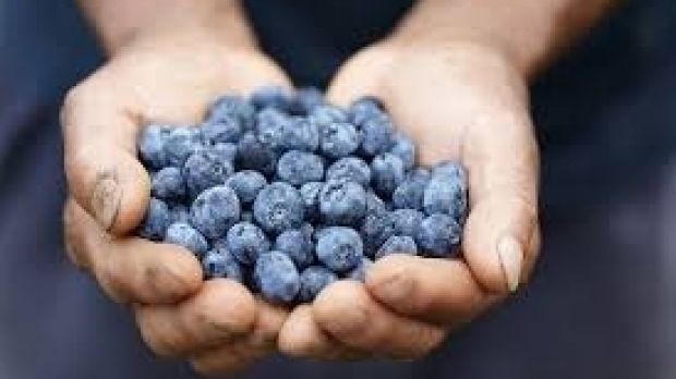 Blueberries for a better mood.