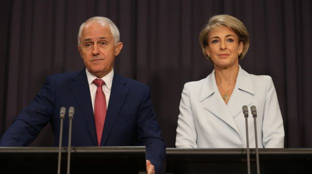 Mr Palmer filed lawsuits against Prime Minister Malcolm Turnbull and Employment minister Senator Michaelia Cash in February.