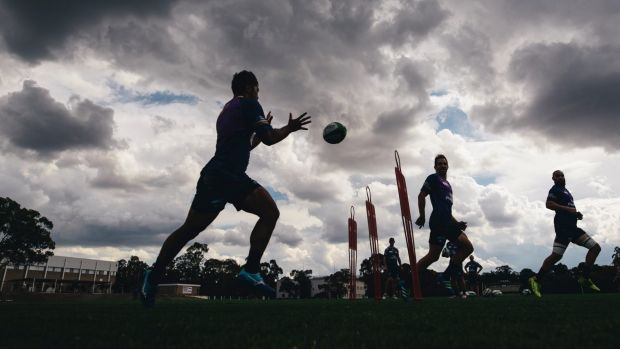 Brumbies training on Monday afternoon.