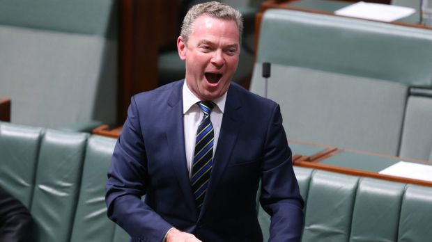 Defence Industries Minister Christopher Pyne during question time on Tuesday.