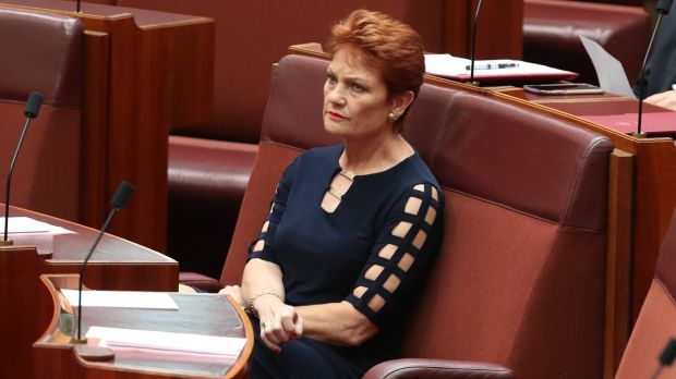 an argument opposing pauline hansons view on migration The topic of discussion was on mass cross-culture migration putting  with this argument and for those who feel  lambie and pauline hanson's one.