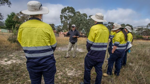 The ACT's first Aboriginal Green Army have begun work across the capital doing land management and cultural learning ...