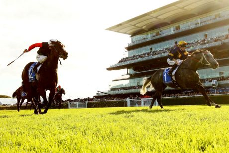 Stiff opposition: Jockey Tommy Berry rides Chautauqua to win The Darley T J Smith Stakes at Royal Randwick racecourse.