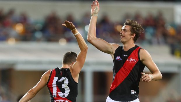 Hi five: Joe Daniher and Orazio Fantasia celebrate a goal.
